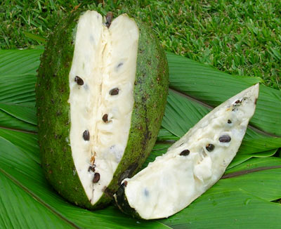 Guanabana: frutto dalle mille proprietà